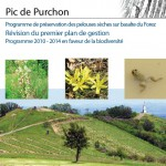 PDGs-Purchon-web