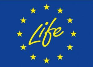 Europe-Life